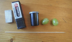 Magnetic grapes and NMR